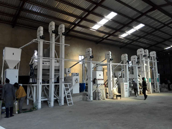 200T/D parboiled rice processing plant of Tanzania customer